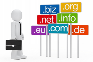 Domain Web Anda